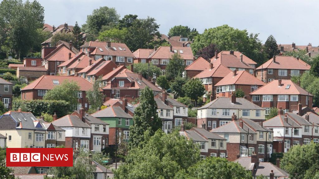 Gardens help towns and cities beat countryside for tree cover